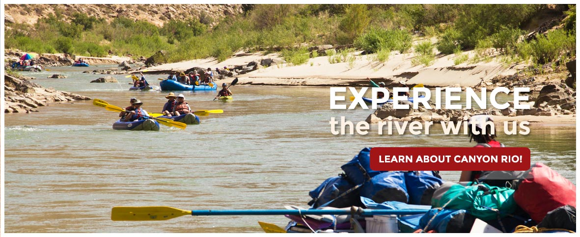 arizona salt river rafting company